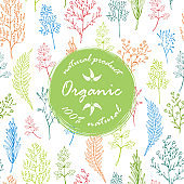 Seamless pattern with herbs and leaves and organic label