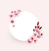 cherry blossoms flower illustration isolated on pink background, lovely greeting cards,vector, ,banners,elements,invitation,brochure,posters