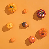 Autumn sunlit orange background with pumpkins and seasonal fruits.