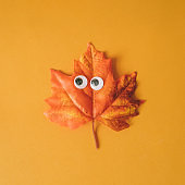 Halloween maple leaf with googly eyes and orange background.