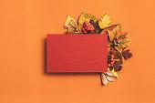 autumn greeting card maroon paper orange foliage