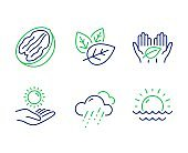 Fair trade, Rainy weather and Sun protection icons set. Pecan nut, Organic tested and Sunset signs. Vector