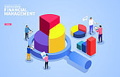 Financial Digital Auditing and Financial Management