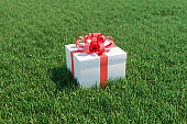 Christmas Ideas White gift box with red ribbon on green grass filed. 3D Render. Selective focus.