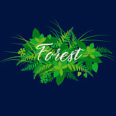 Forest foliage, leaves banner with calligraphy