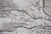 Marble texture background , patterns for design