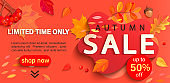 Autumn sale banner, only limited time discounts.