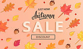 Autumn Sale banner with fall leaves