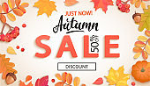 Autumn sale, just now banner with discount.