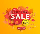 Autumn sale banner, season discount poster.