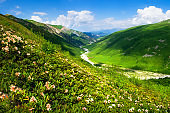 Svaneti, Georgia. Green mountains. Summer mountain landscape on clear day. Bright hills with green grass and blue sky. Mountain valley with river