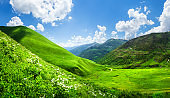 Grassy mountain valley in Svaneti, Georgia. Scenic green hills in sunlight. Beautiful view on summer mountains with clouds in blue sky