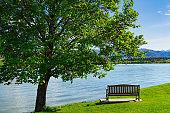 Empty park bench seat under tree