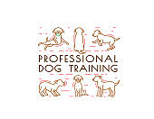 Dog Training Icon
