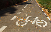 Bicycle road sign on lane with fallen leaves