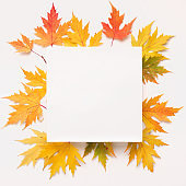 Creative square white blank space surrounded by fallen leaves