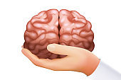 Hand holding human brain mind organ science concept isolated on white icon realistic 3d design template vector illustration