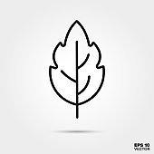 Leaf line icon vector illustration