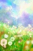 spring flowering meadow
