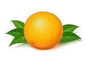 Ripe, juicy orange with green leaf. Vector illustration.