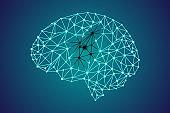 3d digital human brain