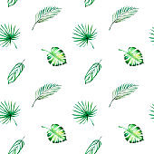 Seamless pattern from tropical leaves. Monstera, palm. Watercolor painting. Exotic plant. Natural print. Sketch drawing.