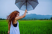 Asian women travel relax in the holiday. The women stood holds an umbrella in the rain happy and enjoying the rain that is falling. travelling in countryside, Green rice fields, Travel Thailand.