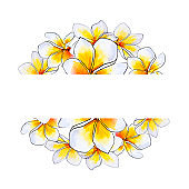 Beautiful round text frame from white plumeria flowers. Frangipani. Watercolor painting.