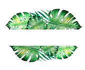 Beautiful tropical leave text frame. Monstera, palm. Watercolor painting. Exotic plant. Natural print. Copy space.