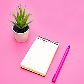 Blank notebook with spiral for the application of labels, pen and aloe Vera in pot on pink background