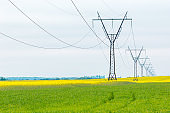 Power line pylons in a row on a rural field with rapeseed in blossom. Power transmission concept.