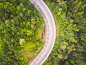 curved road and tropical rain forest aerial view