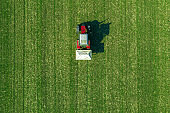 Agricultural tractor is fertilizing wheat crop field