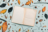 Vintage open book pages mock up with autumn decoration