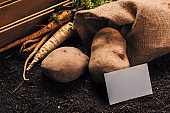 Organic farming of parsley and potato with business card mock up