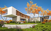 3d rendering of modern house on the hill with pool in autumn