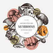Mushrooms vector wreath