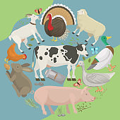 Farm life with animals banner vector illustration. Collection of cute pets. Domestic animals as cow, pig and goose,butterfly, hen, turkey, chick, rabbit, sheep. Local market. Eggs.