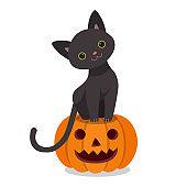 Cute black cat on Halloween pumpkin
