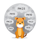 Dog Wearing Air Pollution Mask For Protect Dust PM2.5, PM10, Smoke, Smog