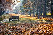 Beautiful fall landscape.