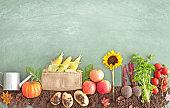 Organic food crop