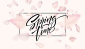 Cherry blossom petal background with Spring time lettering. Vector illustration