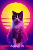 Cat portrait in synthwave aesthetics.