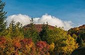 Autumn colors in the famous Prati di Tivo, Abruzzo