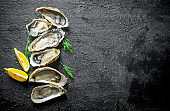 Fresh oysters with lemon slices and dill.