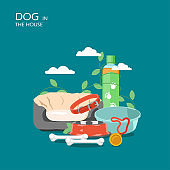 Dog in the house vector flat style design illustration