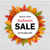 Sale of special offer in autumn season. 3d autumn sale banner with leaves on wood.vector