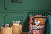 Closeup of single metal bed with orange bedding and fox toy