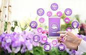 gardening equipment e-commerce concept, online shopping on smart phone, hand pointing and touch screen with tools icons, on spring flower plants background